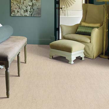 Caress Carpet by Shaw | Highland, IL